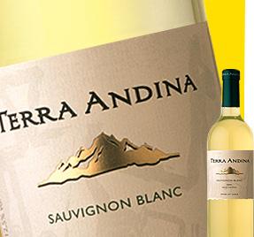 Terra Andina Sauvignon Blanc