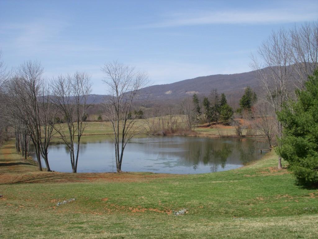 The pond at Pollak Vineyards