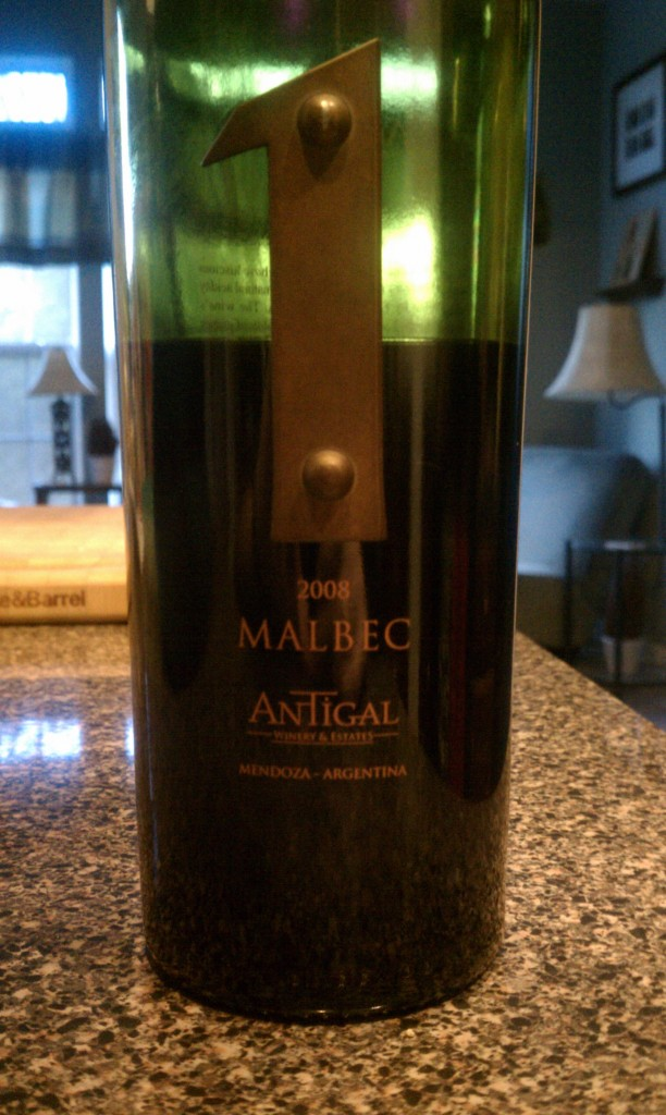2008 Antigal Uno Malbec
