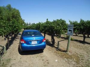 The parking lot at Retzlaff Vineyards