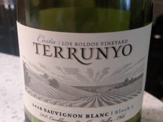 Image of a bottle of 2016 Terrunyo Sauvignon Blanc