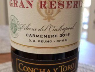 Image of a bottle of 2016 Concha y Toro Gran Reserva Serie Riberas Carmenere