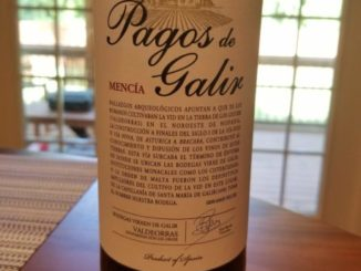 Image of a bottle of 2016 Pagos de Galir Mencia