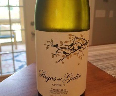 Image of a bottle of 2017 Pagos de Galir Godello